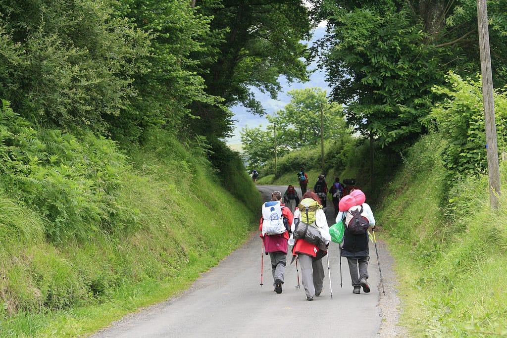 "<a href=""https://en.wikipedia.org/wiki/French_Way"" target=""_blank"" rel=""noopener"">Ruta del Camino de Santiago Frances Trail</a>"