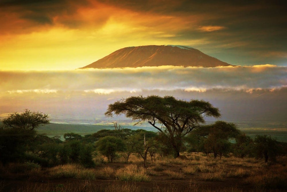 Sunset Mount Kilimanjaro